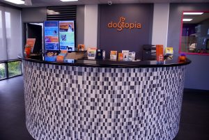 Front Lobby at Dogtopia Anaheim Hills