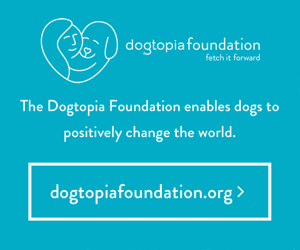 The Dogtopia Foundation enables dogs to positively change the world.