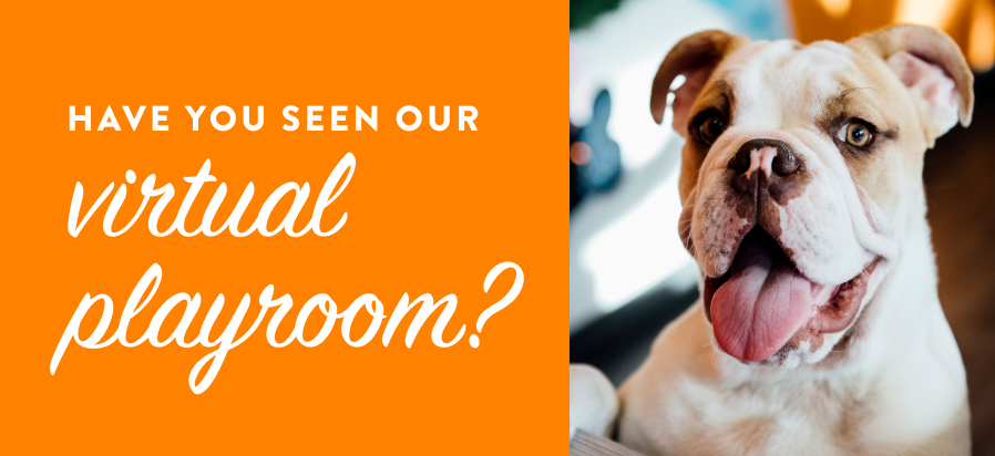 Have you seen our virtual playroom?