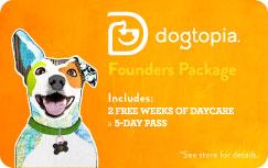 dogtopia-foundersclubhvtx-giftcard