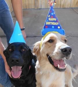 Birthday Day Celebration