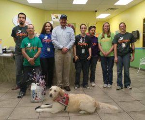 Charity Dog Wash 2014