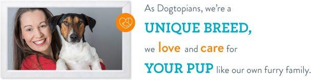 dogtopia-unique-breed